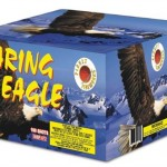 Soaring Eagle - 100shot Cake-441